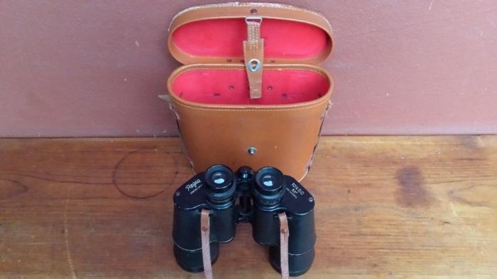 Old pair of Regia Binoculars.