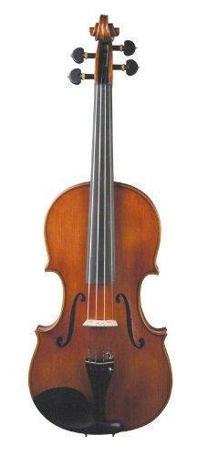 Swop for Violin