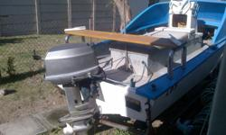 13ft6 Deep V Ski Boat 35hp Evenrude Trailer Needs Some