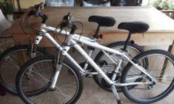 Soort: Bicycle Soort: Mountain Bikes 2 x Silverback