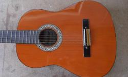 Beginners acoustic guitar for adult
