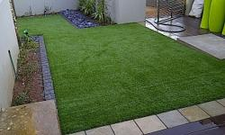 Benefits of Eco-Grass ·         Ever green ·