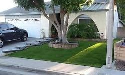 Best prices offeredfor Easy Lawn and Econo Grass- per
