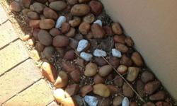 +_ 500 KG OF BROWN GARDEN PEBBLES (SIZE OF A POTATO)