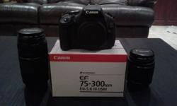Selling a Canon EOS 600D, inclusive of following