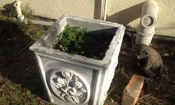 X2 Cement pots for sale Slightly chipped R100 each