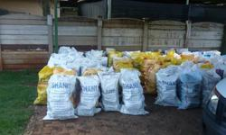 Dry Firewood (Kaggelhout) for Sale 20 X 50 kg Bags for