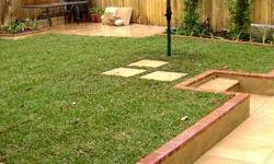 For the best instant lawns in Gauteng, both delivery