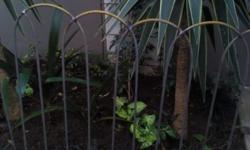Steel garden fence for sale sms me callie for more