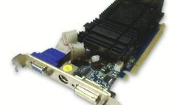 GeForce 8400GS (PCI-E) 256 DDR2 graphics card + HDTV