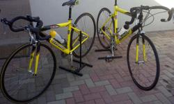 Soort: Bicycle The two yellow Giant (OCR three)