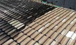 Hi, we offer the following Cleaning services: Roof