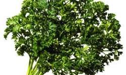Beskrywing Fresh Cut Herbs and Potted Herbs Trees and