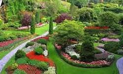 Honest landscapes is one of the leading landscaping