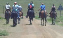 Beskrywing Out rides with our well trained horses,