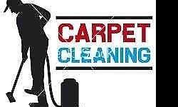 PROFESSIONAL CARPET AND UPHOLSTERY CLEANER I use the