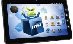MSI Windpad Enjoy 10. Have the following specs: LED