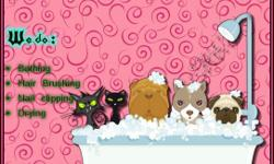 Beskrywing Do your furry pet need a Bath? we do cats