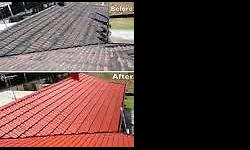 We do roof cleaning, gutter cleaning, painting and