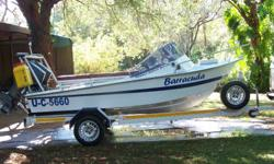 13.5ft ski boat with 2 x 30hp yamaha motors with