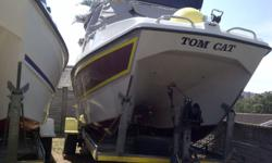 Tom Cat 19ft 2007 model 2x 115 very good condition all