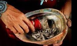 TRADITIONAL HEALER AND ASTROLONGER +27717660571  Have