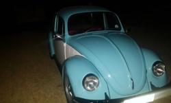 1975 1300 vw beetle for sale. Been restored. Everything